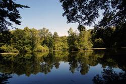 Bei dem Leyenweiher handelt es sich um einen Stau-Teich der um 1845 angelegt wurde