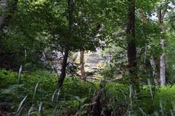 Durch seine schroffe Formation und einen auffallend gelbgrünlichen Flechtenbewuchs wirkt der Felsen Hollenhaus andersartig und irgendwie geheimnisvoll