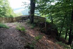 """Das """"Hollenhaus"""" ist gar kein Haus, sondern ein wuchtiger Felsen im Wald nahe Bödefeld"""