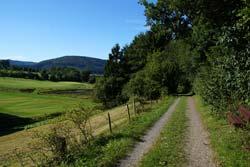 Golddorf-Route mit Blick auf den Wilzenberg