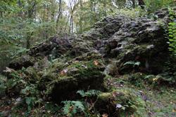 Die Dicken Steine