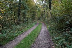 Die Eisenstraße zwischen Kalkofen und Distelkamp