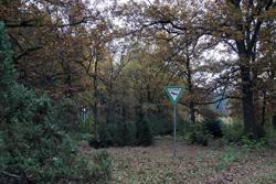 Naturschutzgebiet Wacholderheide Kihlenberg