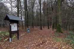 Der Dicke Schlag in Hohenhain