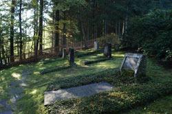 Der jüdische Friedhof in Burgholdinghausen