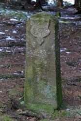 Historischer Grenzstein DD (Nassauerr Seite) am Heck