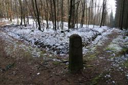 Historischer Grenzstein DD am Heck