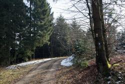 Möhne-Westerwald-Weg am Alten Fuhrmann