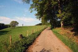 Wanderweg A9 vorbei an Weidekämpen