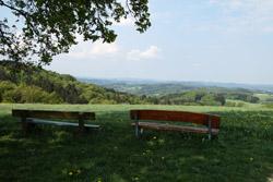 Blick zum fernen Siebengebirge
