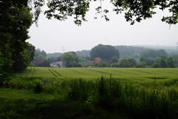 Blick vom Vierenberg auf Hollenstein