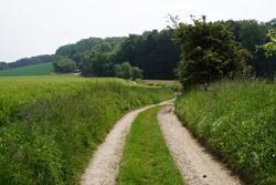 Der Hansaweg (X9) am Großen Berg