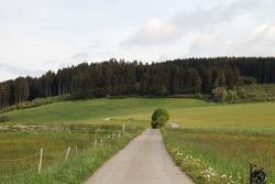Zwischen Trufterhain und Windbrachekopf