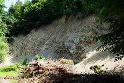 Mergelgrube am Hang des Piepenkopf