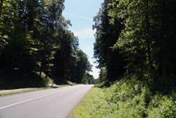 Die heutige B 1 durch den Barntruper Stadtwald