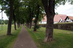 Stadtmauer um die historische Altstadt von Lügde