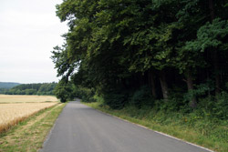 Alte karolingische Gaugrenze zwischen Wethi- und Tilithigau
