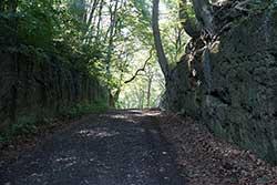 Hohlweg auf dem Jakobsberg
