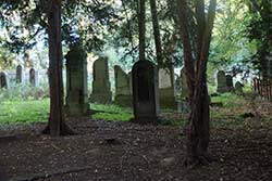 Jüdischer Friedhof im Uhlenbruch