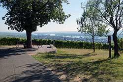 Panoramablick am Johannisberg