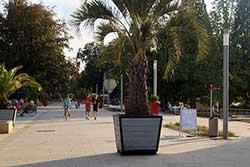 Kurpromenade