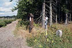 Historischer Grenzstein