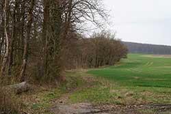 Kreideberg oberhalb von Atzenhausen