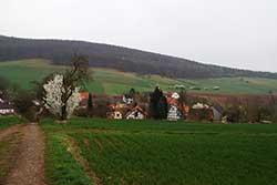 """Blick vom """"Werra-Burgen-Steig Hessen"""" über Albshausen zum Kobelsberg"""