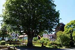 Der Dorfplatz in Ahrenberg