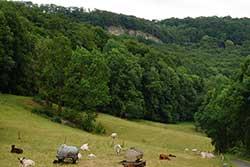 Blick auf den Weißen Graben über Hitzelrode