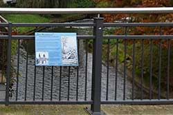 Radewiger Brücke